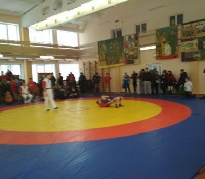 Открытый турнир по самбо