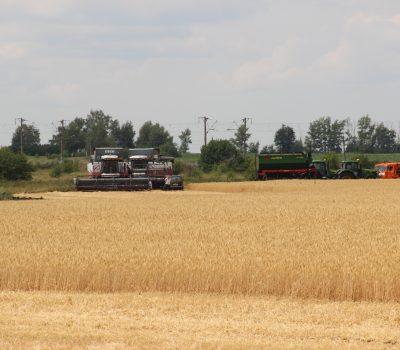 14 октября – День работников сельского хозяйства