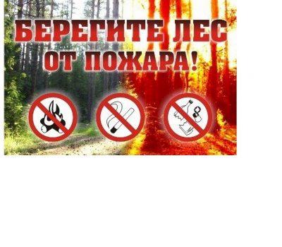 Запрещено разводить костры!