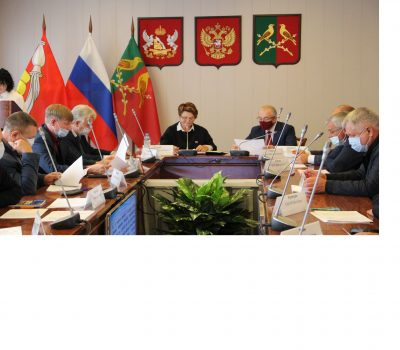20 сессия Совета народных депутатов Таловского муниципального района